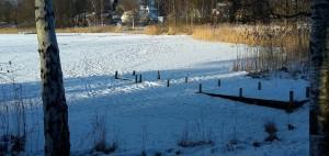 Isen på Flaten är så pass tjock att den bär och jag såg flera stigar i snön som ledde rakt ut på isen.