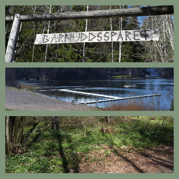 Bilden i mitten är på Möllebadet som är övergivet så här års. Den nedersta bilden föreställer vitsippor.